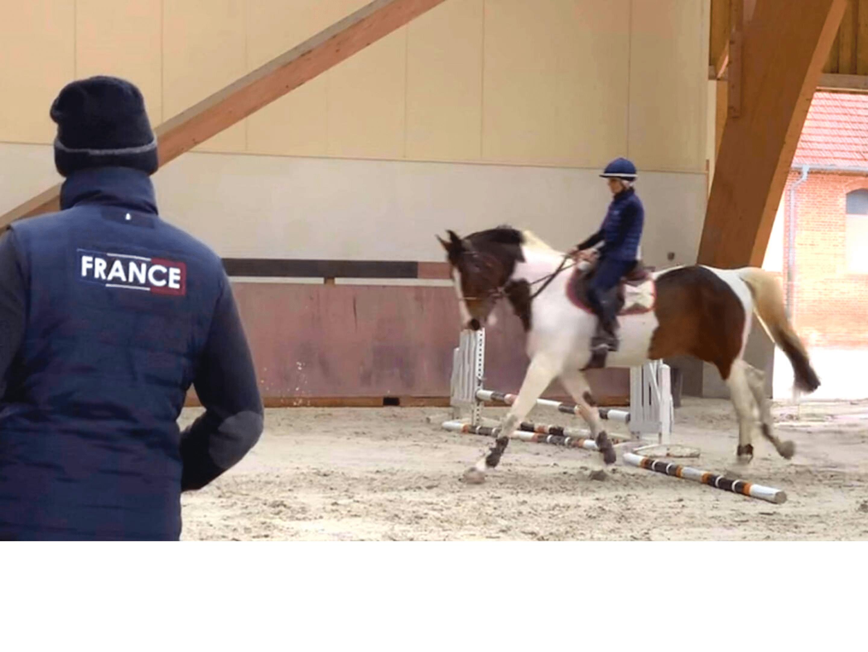 stage equitation cheval cavalier terre de sport equestre