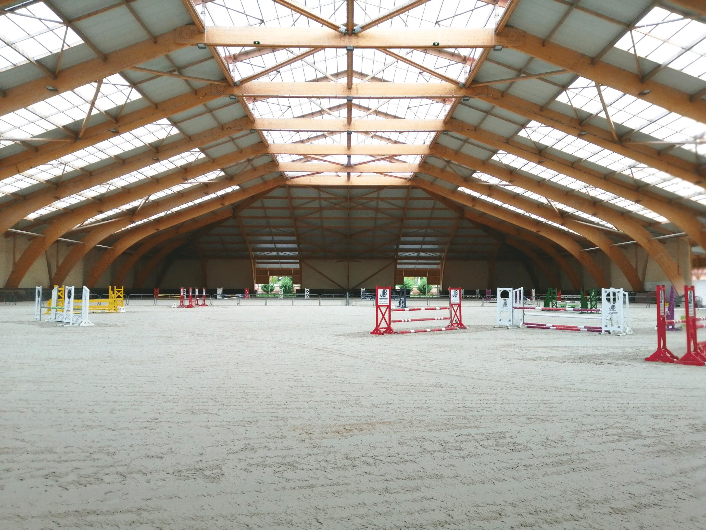 cours equitation FFE manège cheval cavalier saut d obstacle dressage