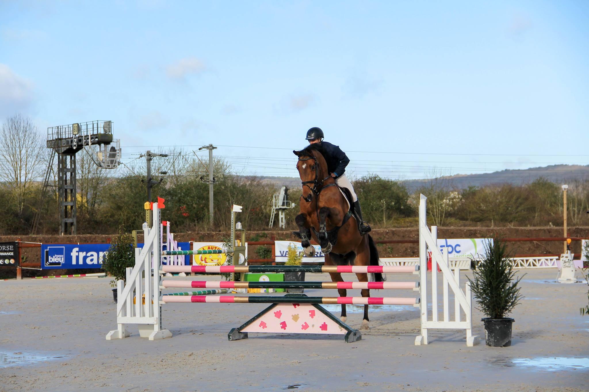 Saut d'obstacles: Comment aborder un vertical avec son cheval ?
