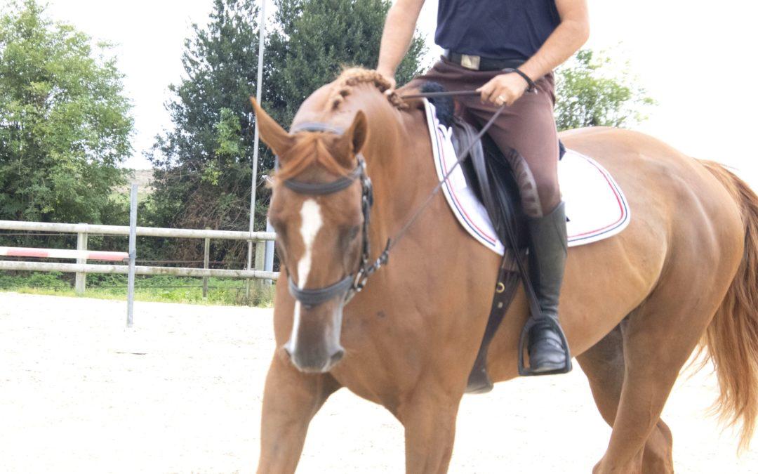 Assouplir le côté raide de votre cheval: 3 erreurs à éviter