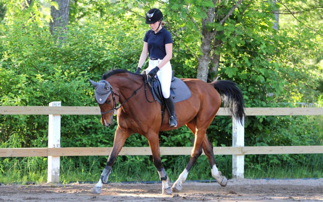 Epaule en dedans: 3 erreurs à éviter avec son cheval
