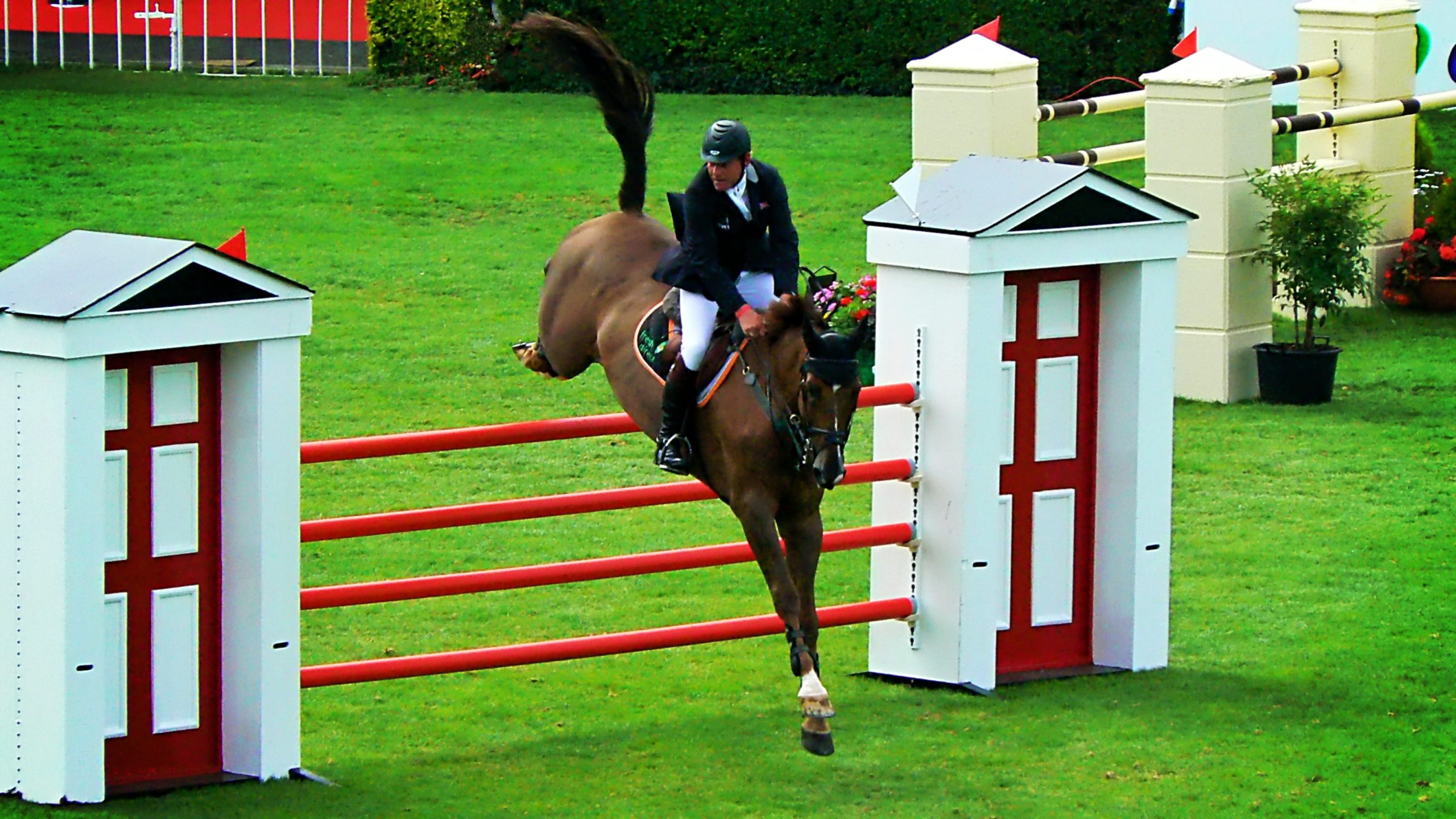 Saut d'obstacles: Comment aborder un vertical avec son cheval ?