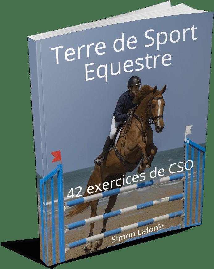 exercices de saut d obstacles cheval