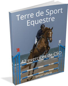 ebook TDSE exercices CSO