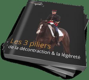 ebook TDSE décontraction équitation légèreté