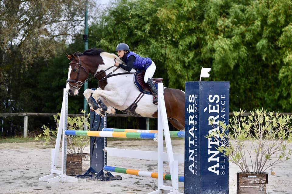 compter foulees cheval saut obstacle