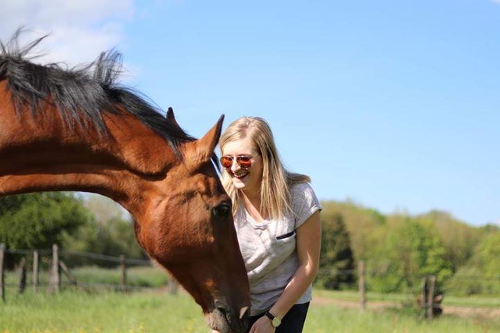 Le stretching du cheval: 3 points clés !!
