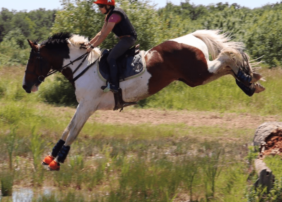 Amandine et ses deux chevaux de CCE Amateur – Coaching TDSE