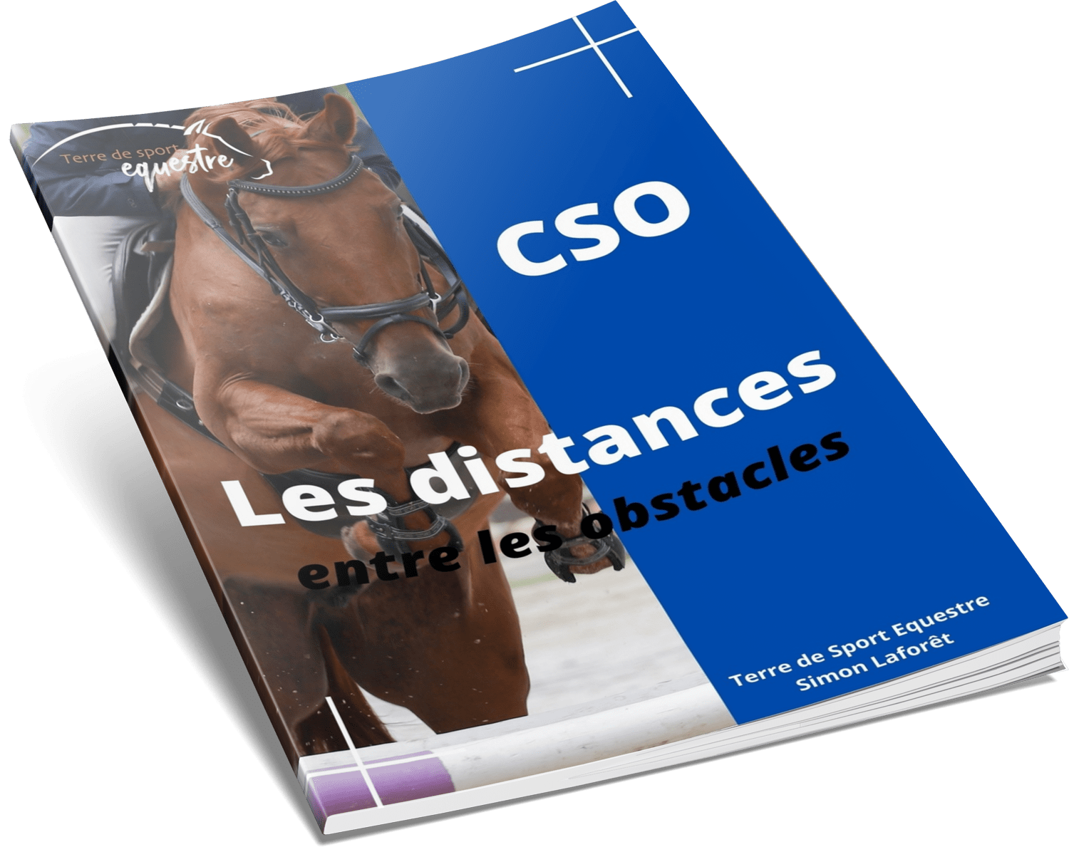 TDSE guide distances obstacle
