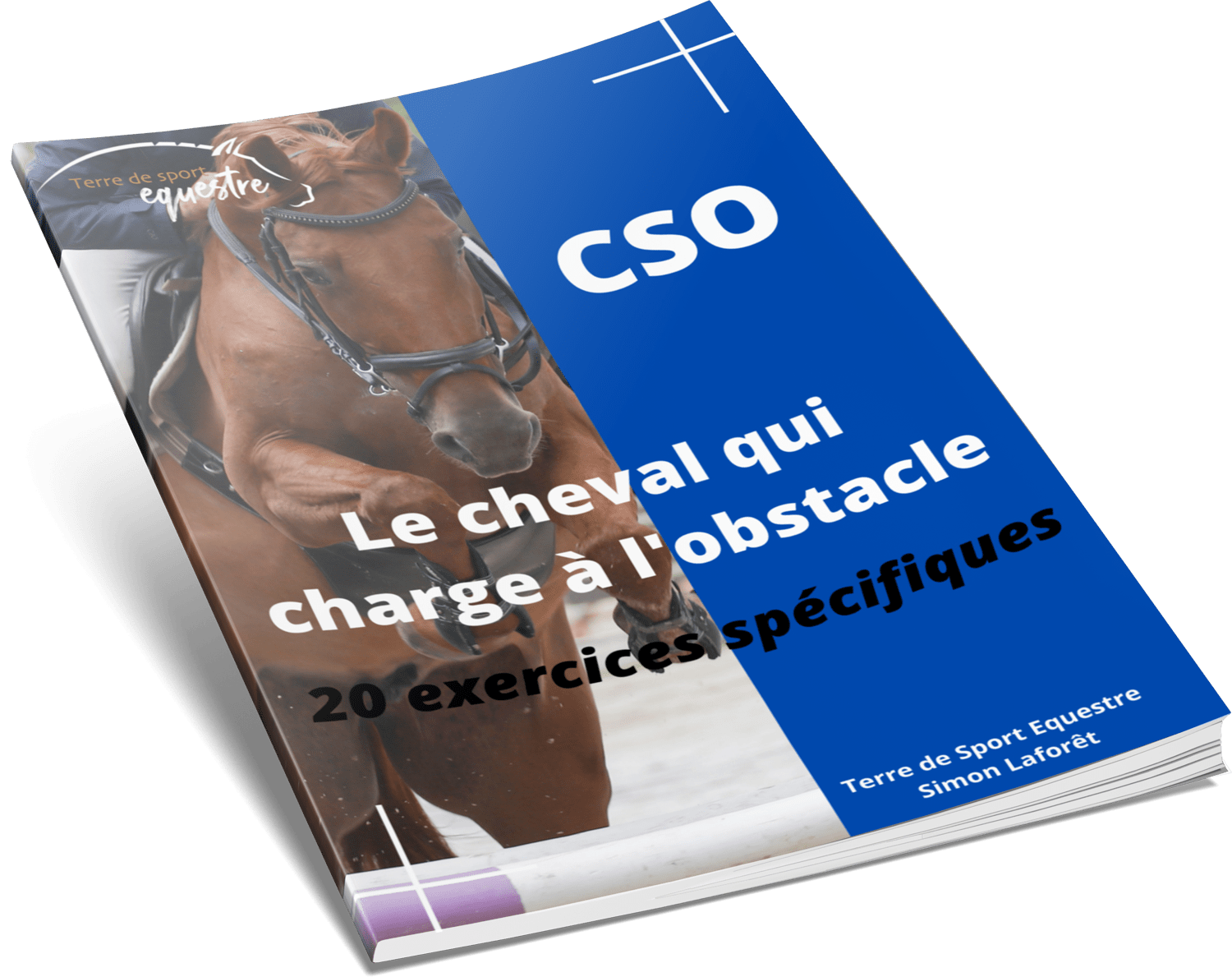 Le cheval qui charge a l obstacle