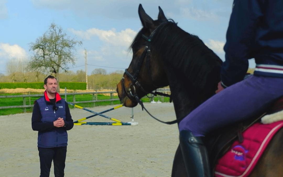 Coach d'équitation : 7 bonnes raisons de lui faire confiance