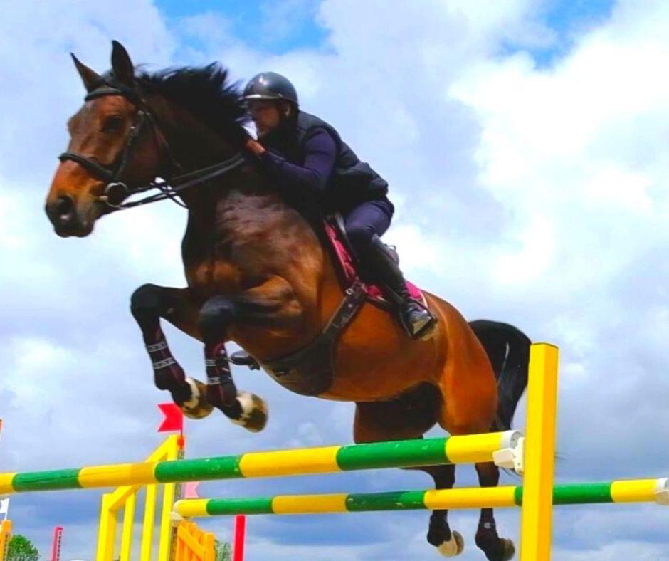 geste du cheval à l'obstacle