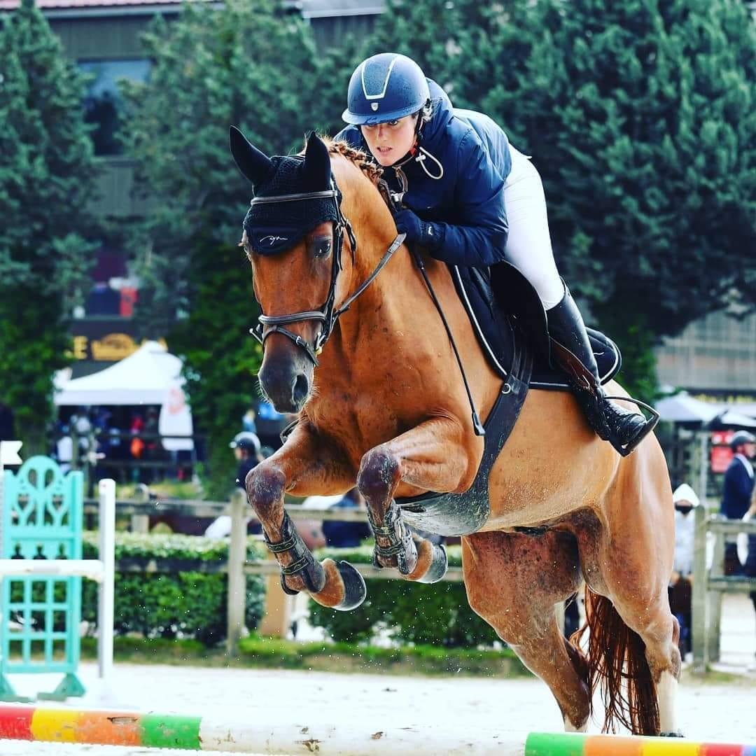sauter au trot exercices saut d obstacles cheval