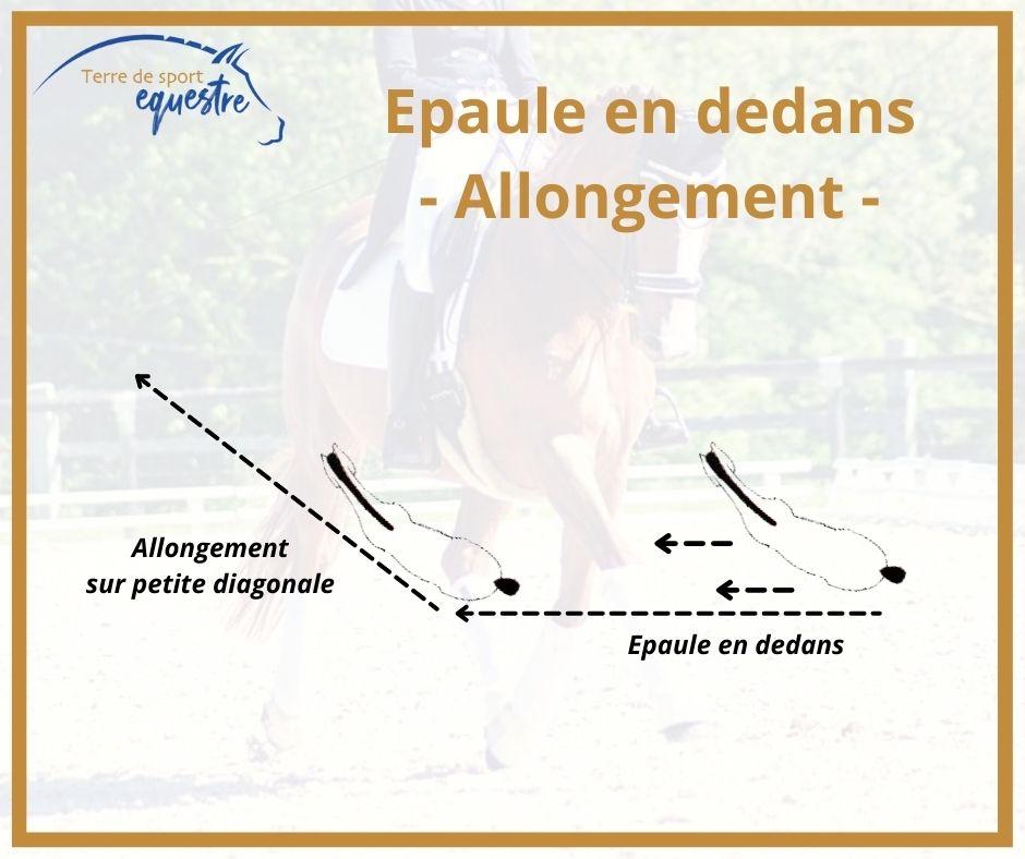Engagement des posterieurs cheval