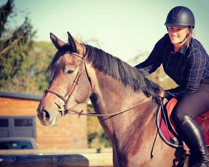 Mécanisation à l'obstacle spéciale jeunes chevaux